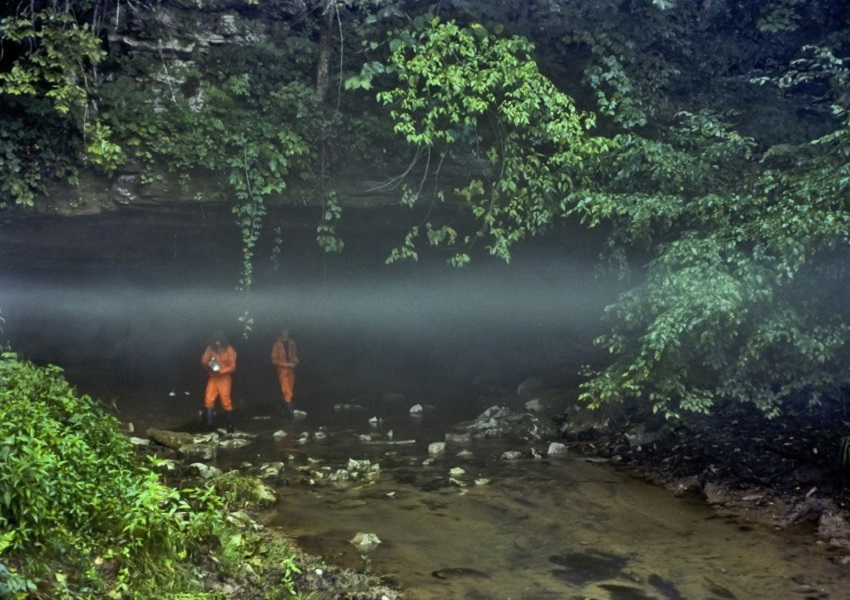 Wolf River Cave Preserve